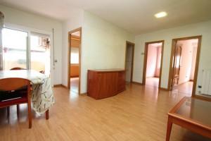 Pis reformat de 3 habitacions