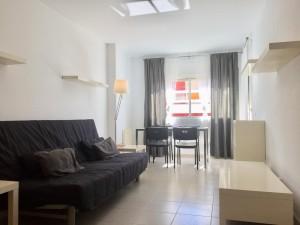 Apartamento céntrico y soleado de dos habitaciones
