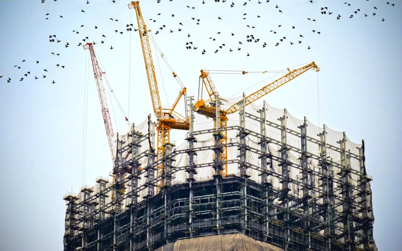 Selección de promotores y constructores